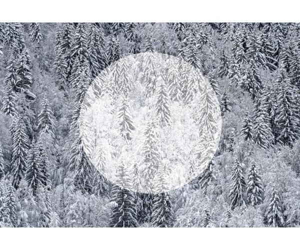 White Silence Gilles Pernet - Vente d'Art