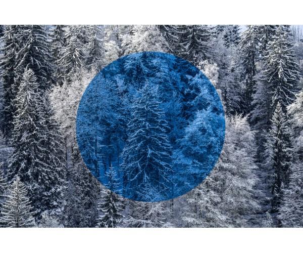 Blue Silence Gilles Pernet - Vente d'Art