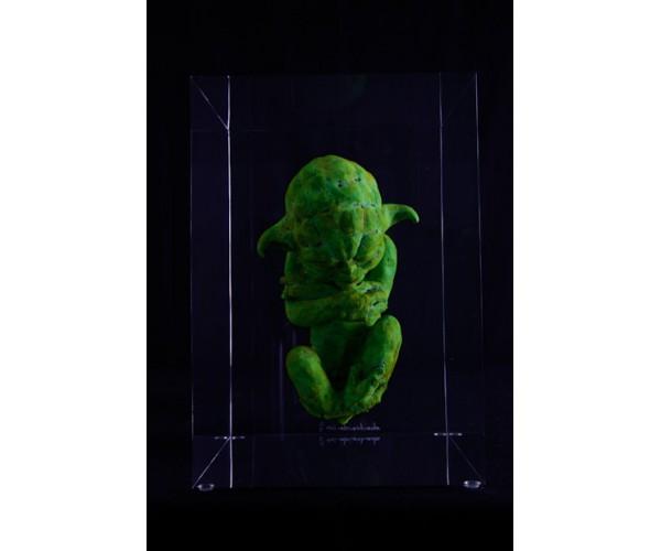 Yodafoetus Alexandre Nicolas - Vente d'Art