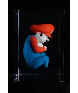 Mariofoetus