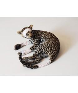 Jeune Leopard Série Accidents de chasse
