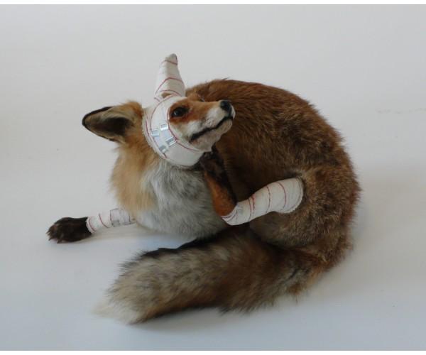 Renard Série Accidents de chasse  Pascal Bernier - Vente d'Art