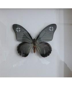 WWF Luftwaffe 2015