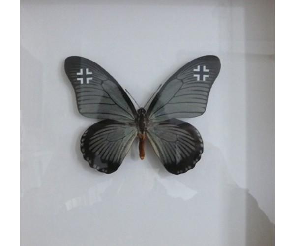 WWF Luftwaffe 2015 Pascal Bernier - Vente d'Art