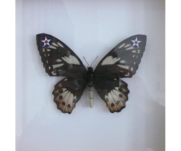 WWF USAF 2008 Pascal Bernier - Vente d'Art