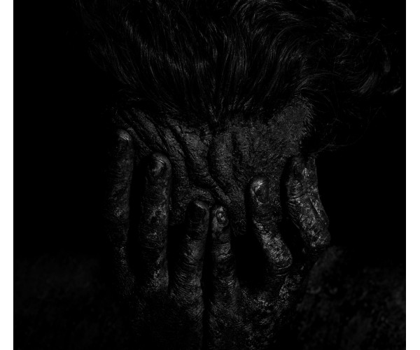 Noir Foncé Gregory Gaydu - Vente d'Art